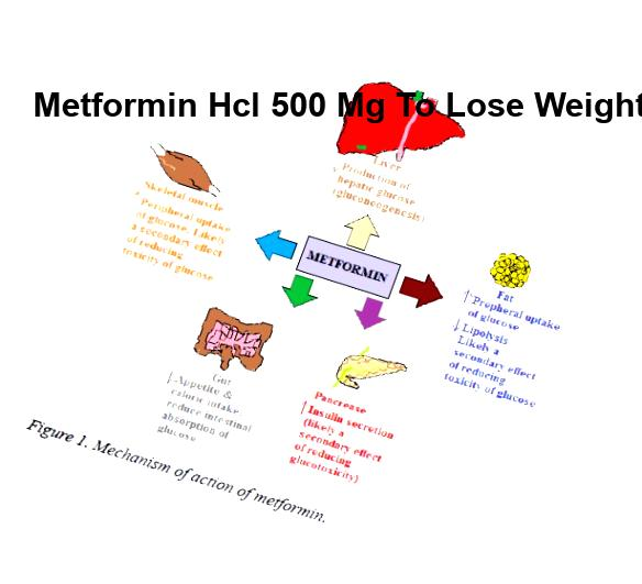 Does ivermectin kill mange mites